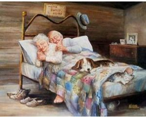an old couple, a cat and a dog all asleep in bed