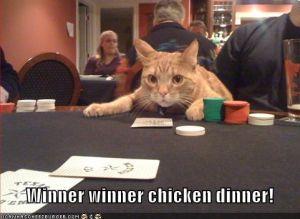 Cat Playing Poker underneath it says Winner Winner chicken dinner